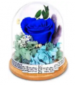 Doo Preserved Rose Discount 50% coupon code off Amazon