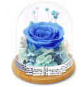 Preserved Rose in Glass Dome Discount 50% coupon code off Amazon